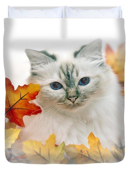 Sacred Cat Of Burma Duvet Cover by Melanie Viola