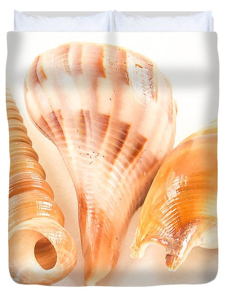 Shell Trio Duvet Cover by Jean Noren