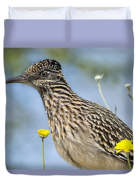 The Greater Roadrunner  Duvet Cover by Saija  Lehtonen