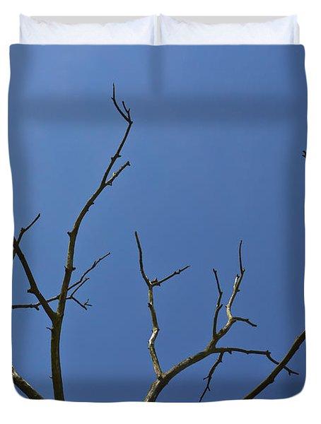 The Lightning Tree Duvet Cover by David Pyatt