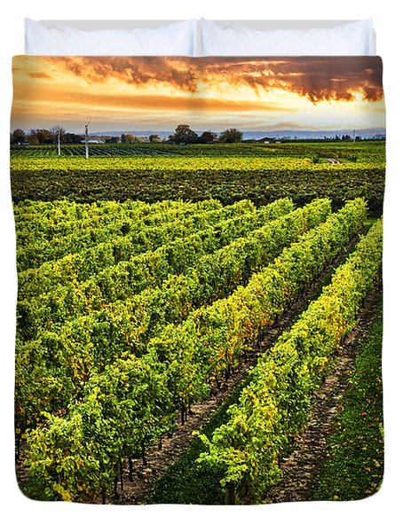Vineyard At Sunset Duvet Cover by Elena Elisseeva