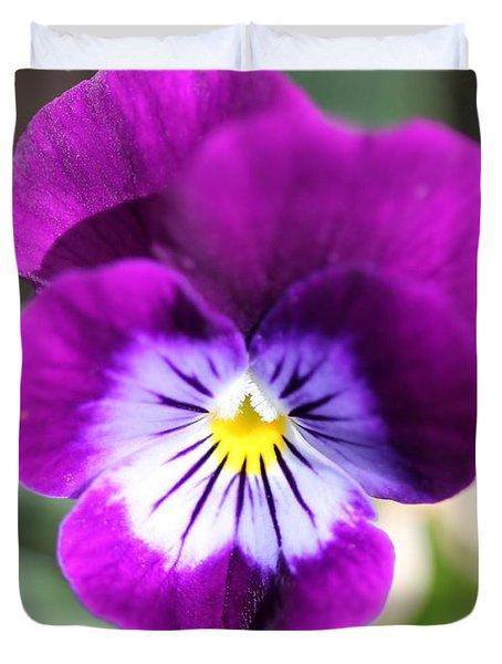 Viola Named Sorbet Plum Velvet Jump-up Duvet Cover by J McCombie