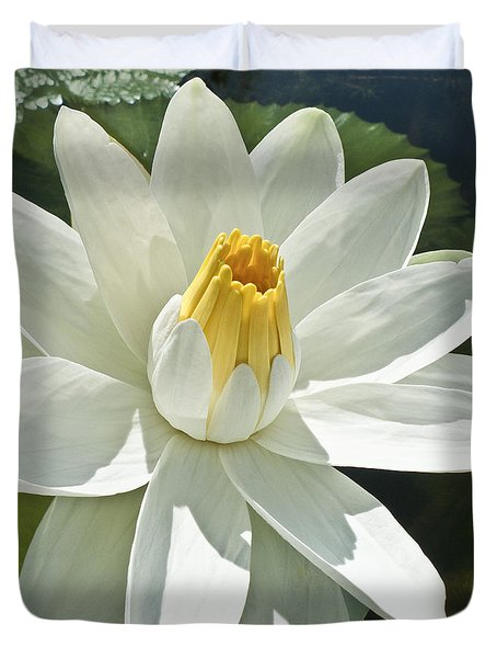 White Water Lily - Nymphaea Duvet Cover by Heiko Koehrer-Wagner