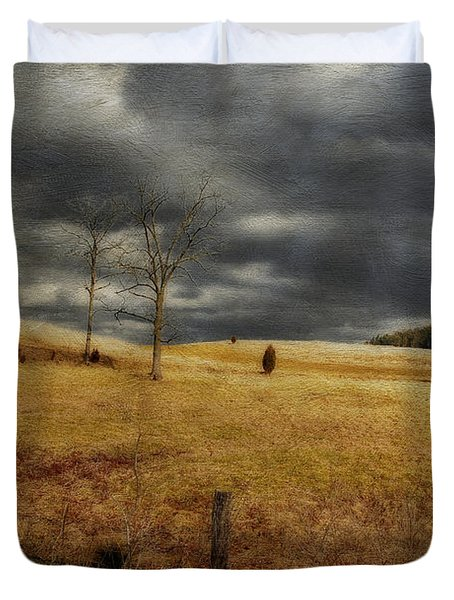 Winter Begins Duvet Cover by Lois Bryan