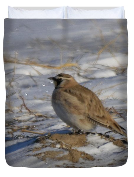 Winter Bird Duvet Cover by Jeff Swan