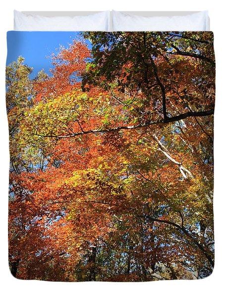 Autumn Trees Duvet Cover by Frank Romeo