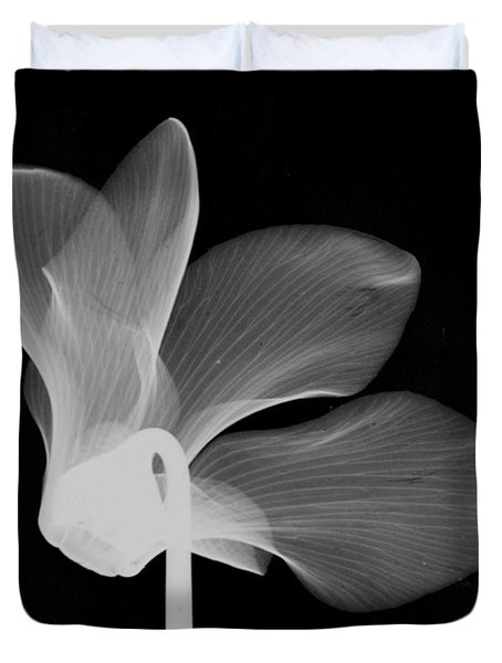 Cyclamen Flower X-ray Duvet Cover by Bert Myers