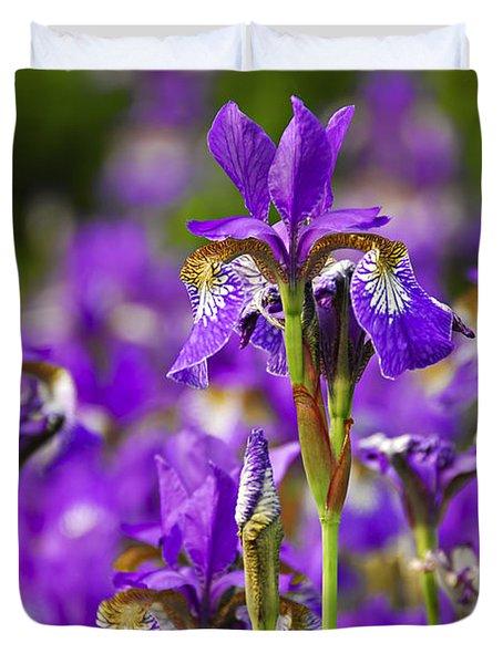 Irises Duvet Cover by Elena Elisseeva