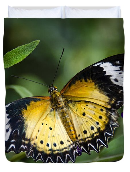 Malay Lacewing Butterfly  Duvet Cover by Saija  Lehtonen