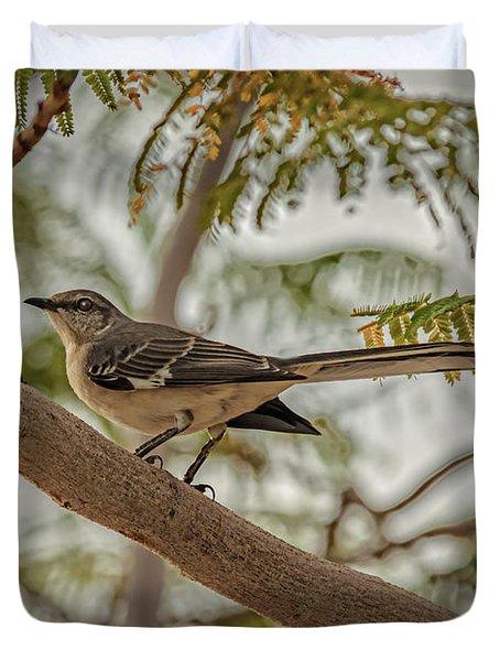 Mockingbird Duvet Cover by Robert Bales
