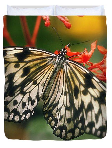 Paper Kite Butterfly Duvet Cover by Cindi Ressler
