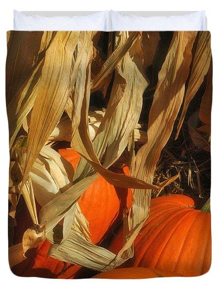 Pumpkin Harvest Duvet Cover by Joann Vitali