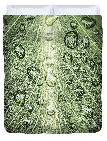 Raindrops on green leaf Duvet Cover by Elena Elisseeva
