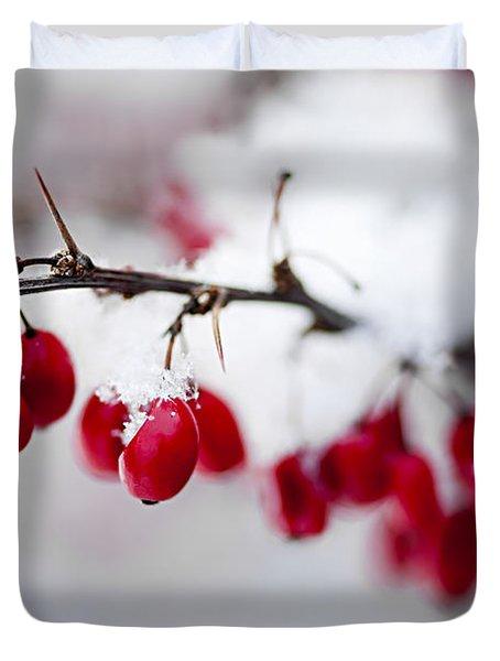 Red winter berries under snow Duvet Cover by Elena Elisseeva
