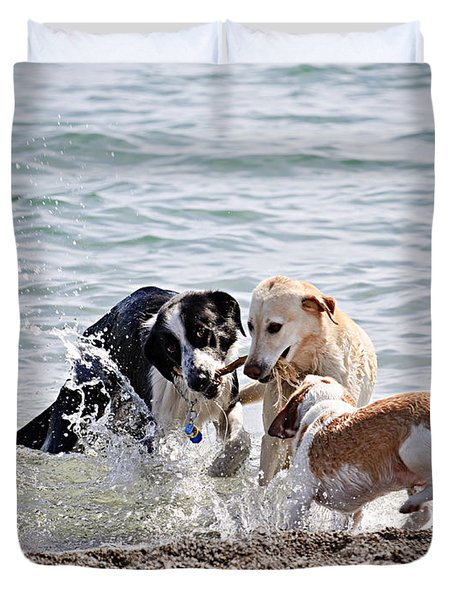 Three Dogs Playing On Beach Duvet Cover by Elena Elisseeva