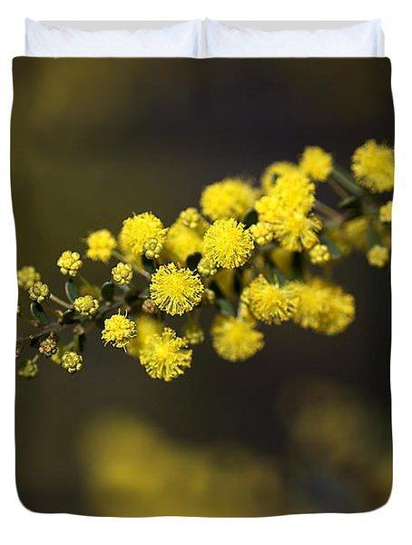 Wattle Flowers Duvet Cover by Joy Watson