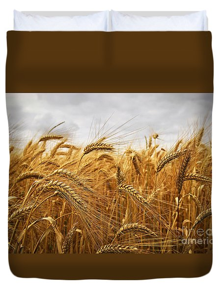 Wheat Duvet Cover by Elena Elisseeva