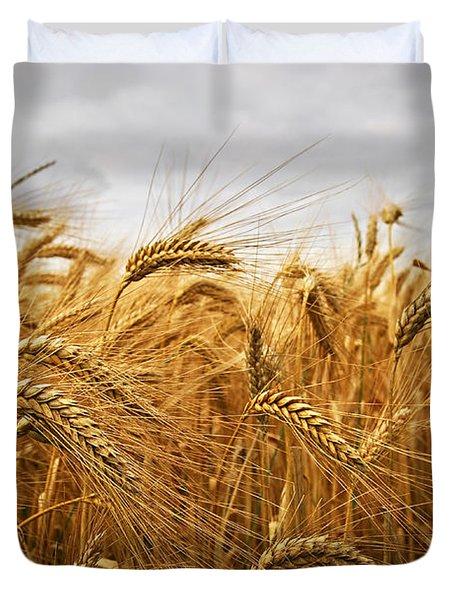 Wheat Duvet Cover by Elena Elisseeva