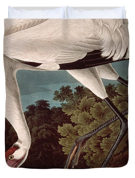 Whooping Crane Duvet Cover by John James Audubon
