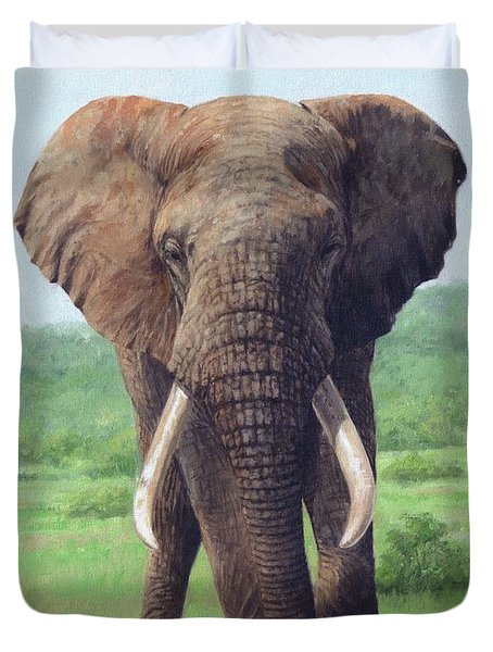 African Elephant Duvet Cover by David Stribbling