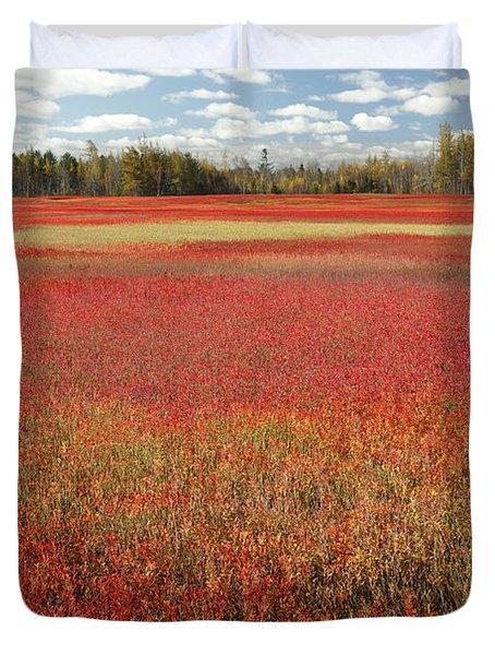 Autumn Blueberry Field Maine Duvet Cover by Scott Leslie