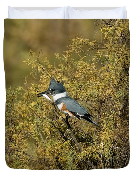 Belted Kingfisher With Fish Duvet Cover by Anthony Mercieca