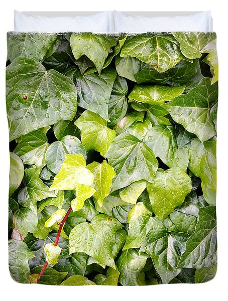 Ivy Duvet Cover by Les Cunliffe