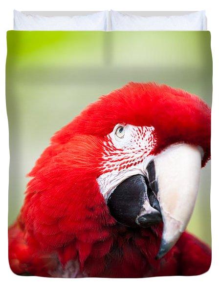 Parrot Duvet Cover by Sebastian Musial