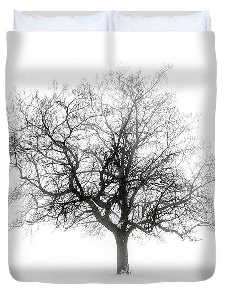 Winter Tree In Fog Duvet Cover by Elena Elisseeva