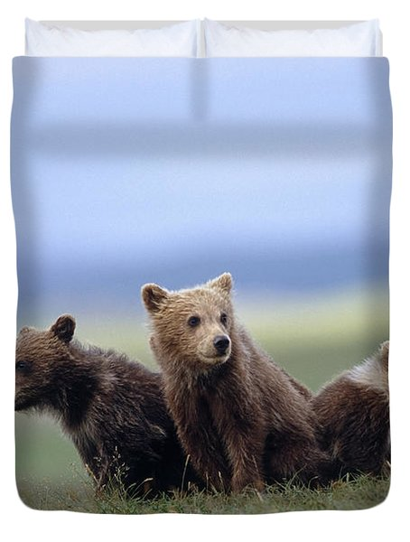 4 Young Brown Bear Cubs Huddled Duvet Cover by Eberhard Brunner
