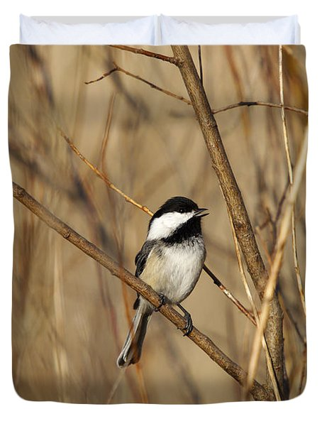 Black-capped Chickadee Duvet Cover by Linda Freshwaters Arndt