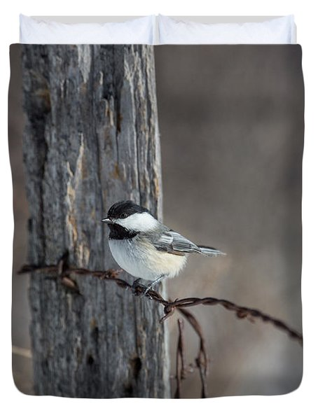 Black-capped Chickadee Poecile Duvet Cover by Linda Freshwaters Arndt