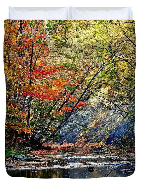 Autumn Stream Duvet Cover by Frozen in Time Fine Art Photography