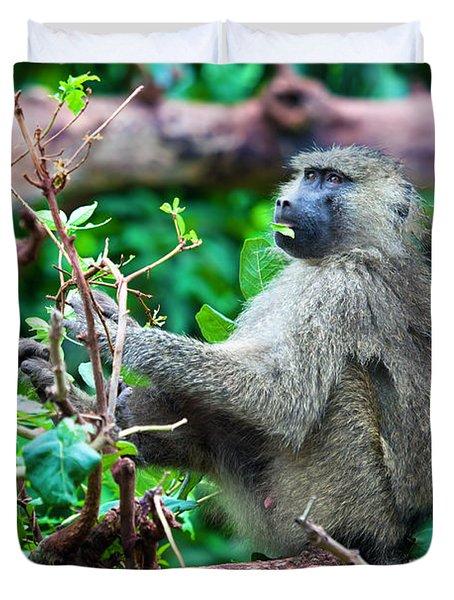 A Baboon In African Bush Duvet Cover by Michal Bednarek