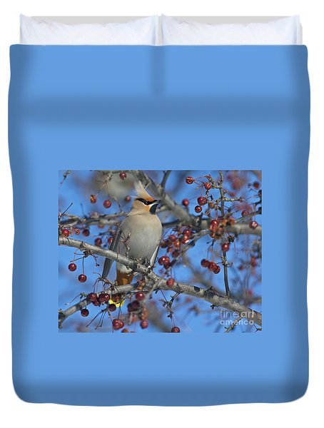 A Bird For Its Crest.. Duvet Cover by Nina Stavlund