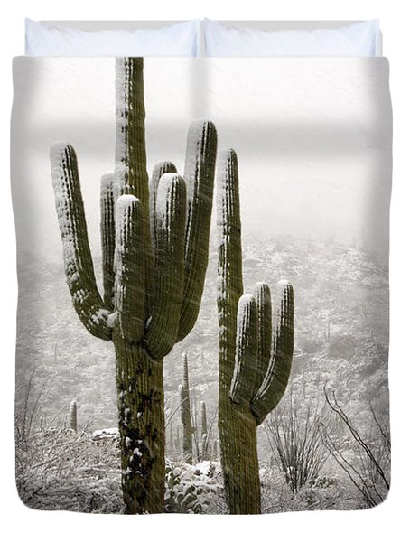 A Desert Southwest Snow Day  Duvet Cover by Saija  Lehtonen