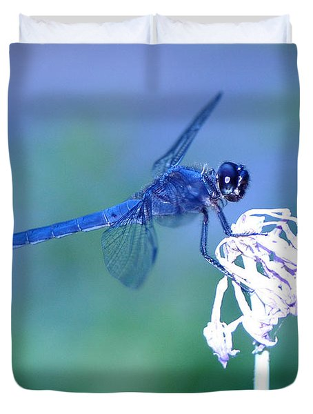 A Dragonfly V Duvet Cover by Raymond Salani III