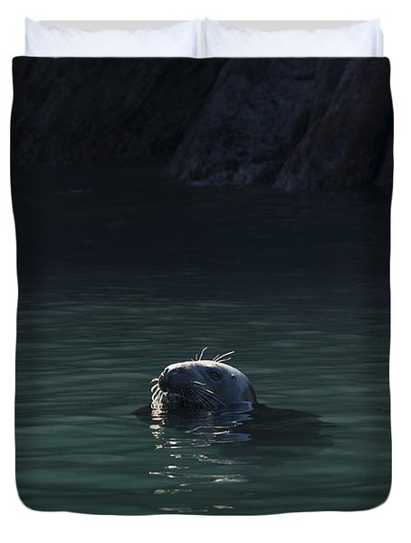 A Fine Day For A Swim Duvet Cover by Anne Gilbert