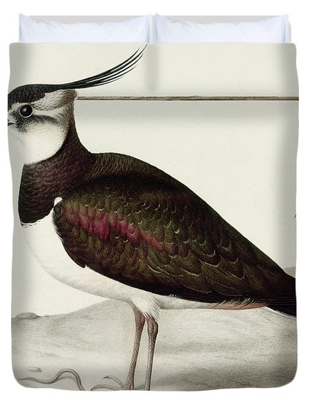 A Lapwing Duvet Cover by Nicolas Robert