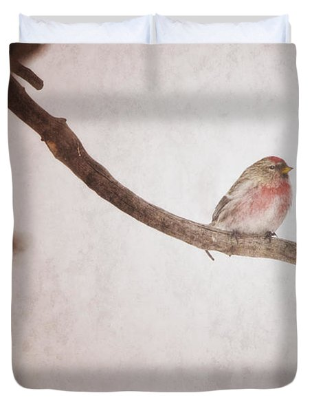 A Redpoll Bird On The Branch Of A Pine Duvet Cover by Roberta Murray