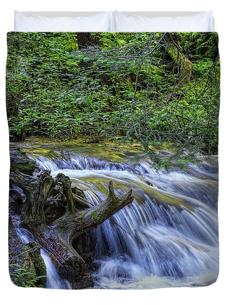 A Restful Stream Duvet Cover by Priscilla Burgers