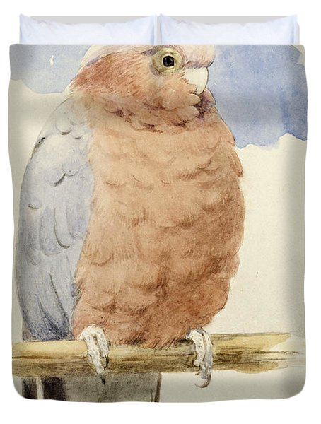A Rose Breasted Cockatoo Duvet Cover by Henry Stacey Marks