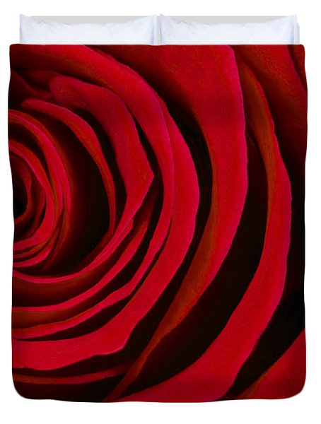 A Rose For Valentine's Day Duvet Cover by Adam Romanowicz