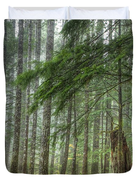 A Walk Through the Forest Duvet Cover by Jean Noren