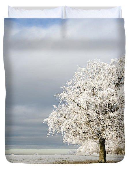 A Winter's Morning Duvet Cover by Anne Gilbert