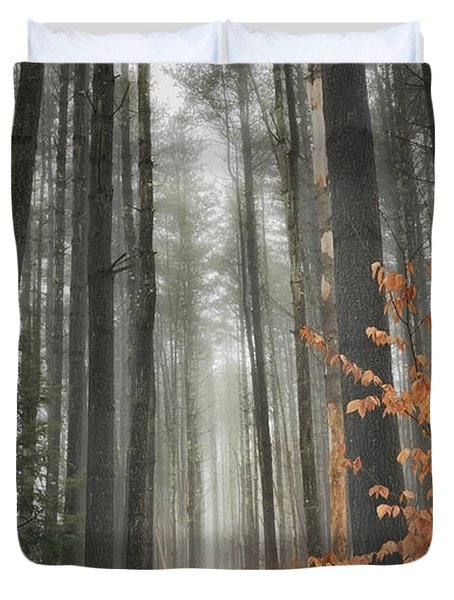 A Winters Path Duvet Cover by Bill  Wakeley