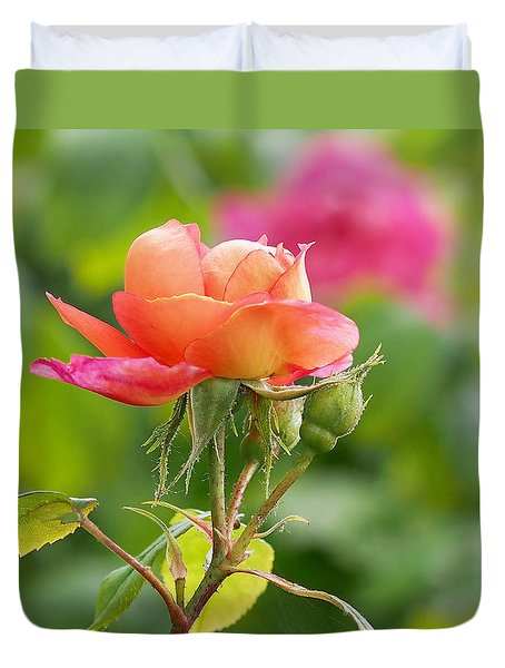 A Young Benjamin Britten Rose Duvet Cover by Rona Black
