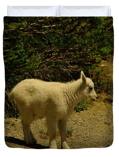 A Young Mountain Goat Duvet Cover by Jeff Swan