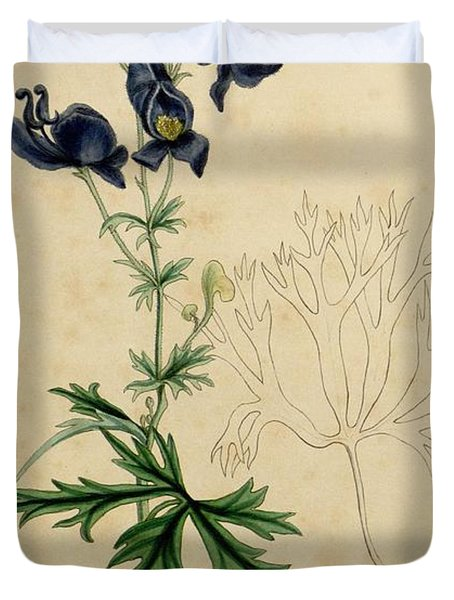 Aconitum Napellus by Sowerby Duvet Cover by Philip Ralley