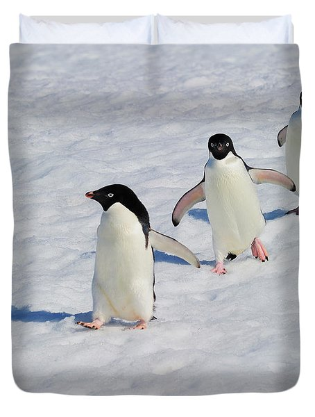 Adelie Patrol Duvet Cover by Tony Beck